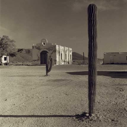 mexican_desert